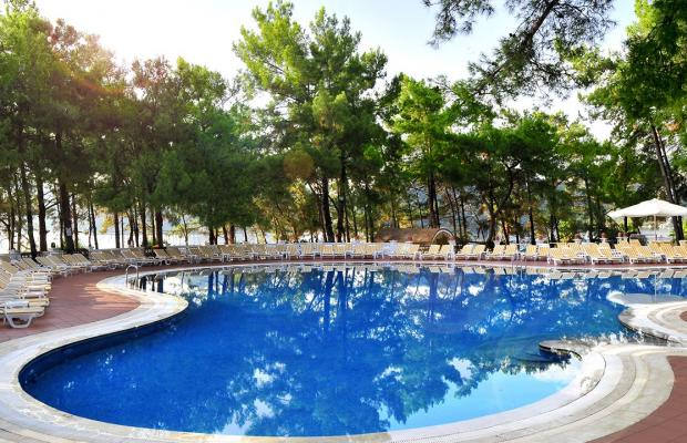 фотографии отеля Grand Yazici Club Marmaris Palace изображение №23