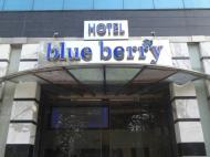 Hotel Blue Berry, 3*