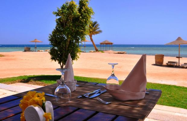 фотографии отеля Paradise Club Shoni Bay Resort (ex. Royal Resort Marsa Alam) изображение №3