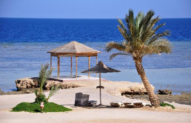 фото Paradise Club Shoni Bay Resort (ex. Royal Resort Marsa Alam) изображение №2