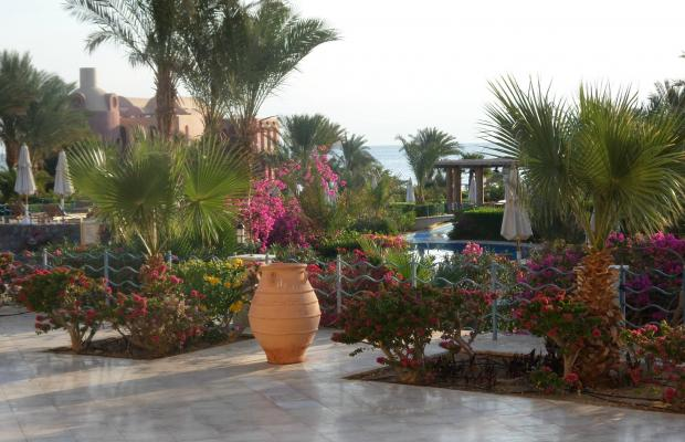 фото Miramar Resort Taba Heights (ex. Hyatt Regency Taba Heights) изображение №14