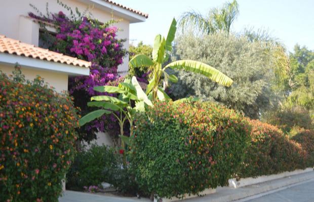 фотографии отеля  Regina's Exclusive Villas изображение №15