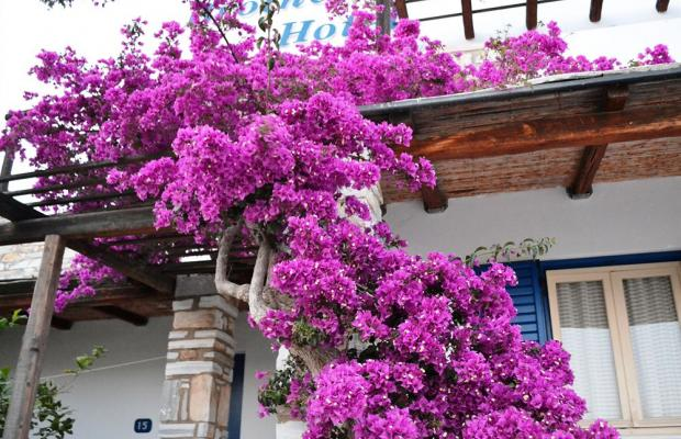 фотографии отеля Brother's Hotel изображение №75