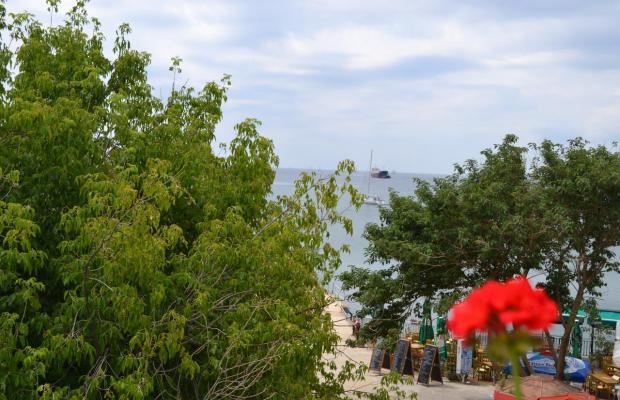 фотографии Family Hotel Magnolia изображение №12