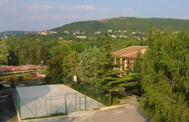 фотографии Ahilea (Ахилея) изображение №28