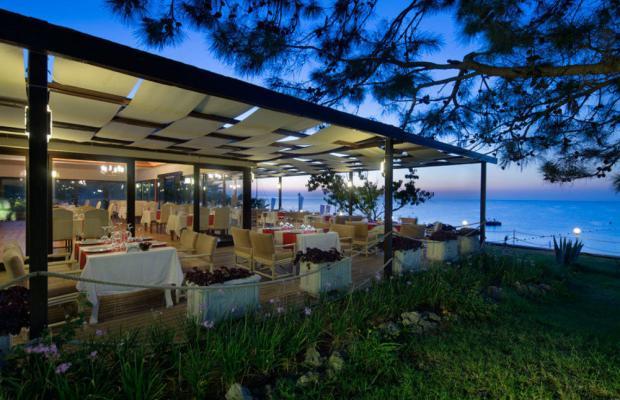 фотографии Tac'un Nisa Resort Tekirova (ex. Larissa Club Saphire; Jeans Club Hotels Saphire) изображение №12