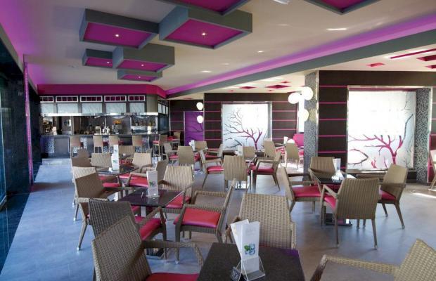 фотографии Hotel Riu Don Miguel изображение №12
