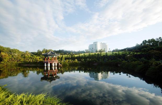 фотографии отеля Kal Seogwipo изображение №59