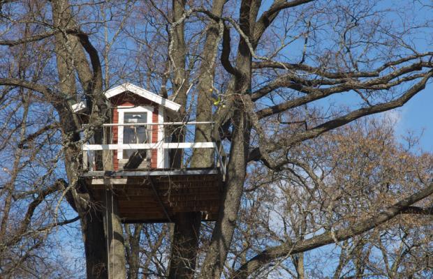 фотографии отеля Woodpecker изображение №11