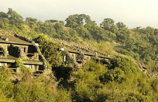 фотографии Ngorongoro Serena Safari Lodge изображение №4