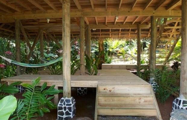 фотографии Copa De Arbol Beach & Rainforest Resort изображение №20