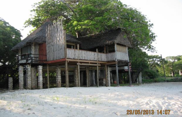 фото отеля The Cove Treehouses (ex. The Cove Retreat) изображение №17