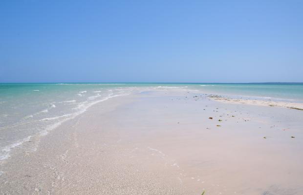 фото Msambweni Beach House изображение №6
