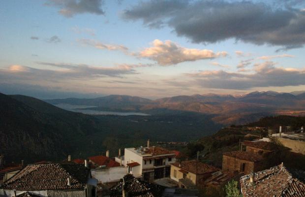 фото Arion Delphi изображение №10