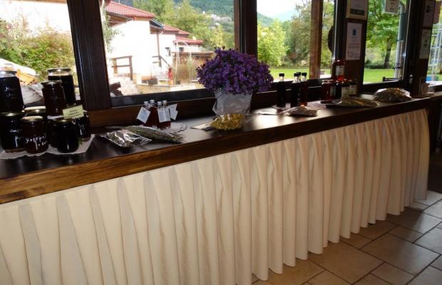 фотографии отеля Ninemia Bungalows Resort изображение №19