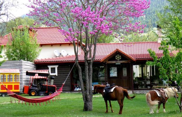 фотографии отеля Ninemia Bungalows Resort изображение №11