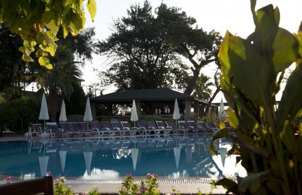 фотографии отеля Armas Gul Beach (ex. Otium Gul Beach Resort; Palmariva Club Gul Beach; Grand Gul Beach) изображение №31