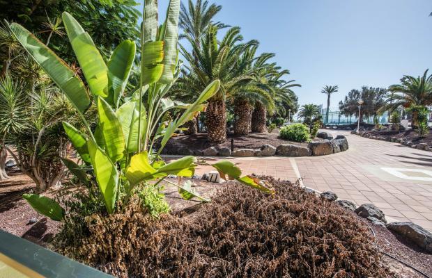 фотографии отеля SBH Club Paraiso Playa изображение №15