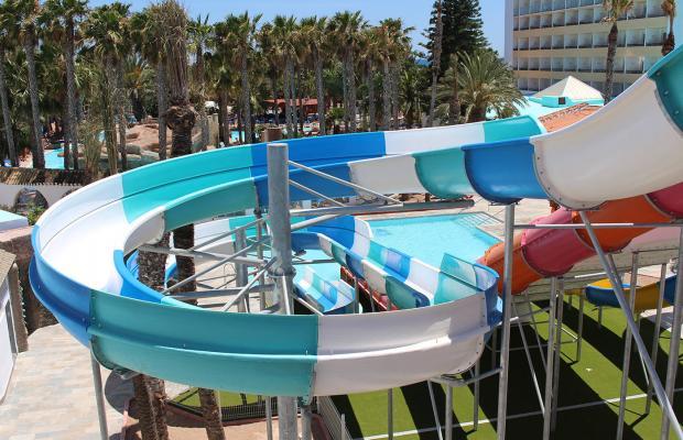фотографии Playa Senator Playasol Spa Hotel изображение №8