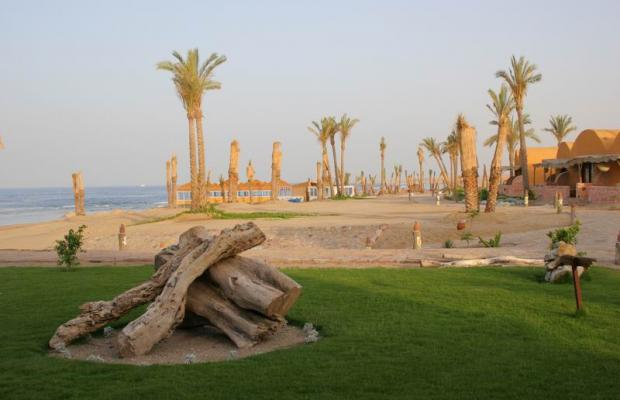 фото Swiss Inn Plaza Resort Marsa Alam (ex. Badawia Resort) изображение №14