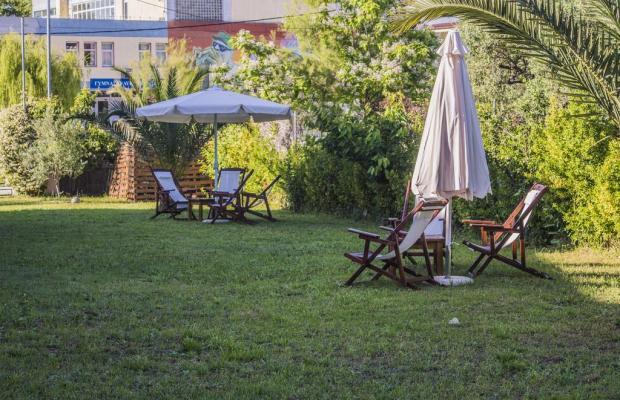 фото отеля Dolphins Apartments & Rooms изображение №25