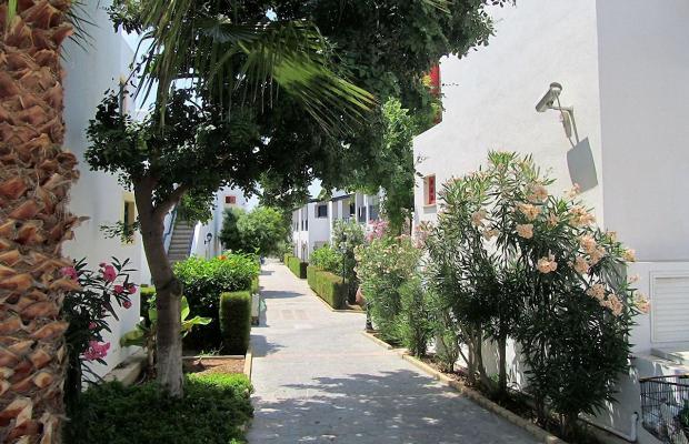 фото отеля Kefalos Beach Tourist Village изображение №33