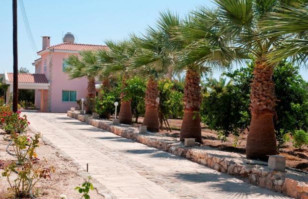 фото Amalthia Villas изображение №14
