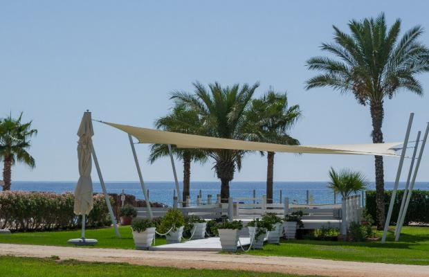 фото отеля Asterias Beach (ex. Maiorulla) изображение №9