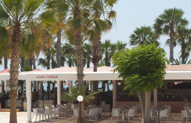 фотографии отеля Louis Phaethon Beach изображение №35