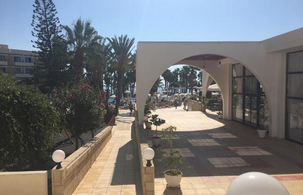 фото Louis Phaethon Beach изображение №14
