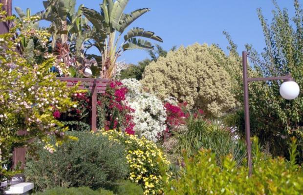 фото Hylatio Tourist Village изображение №10