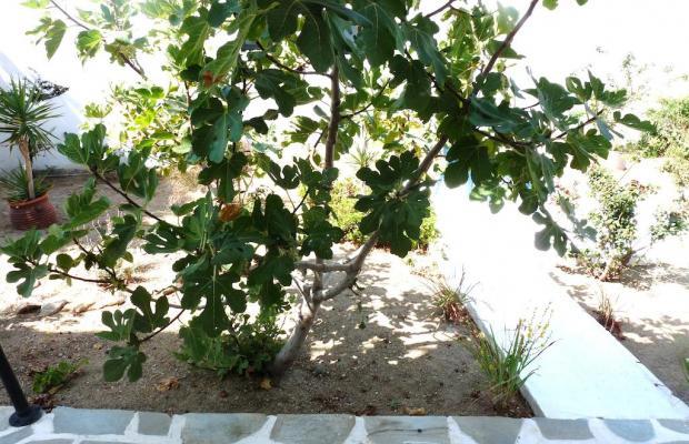 фото отеля Villa Paradisia изображение №41