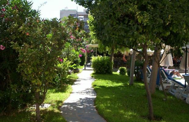 фотографии отеля Jasmine Hotel Apartments изображение №3