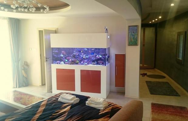 фотографии отеля Ясен 2 изображение №27