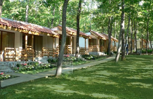 фотографии отеля Kedar Villas (Виллы Кедр) изображение №7