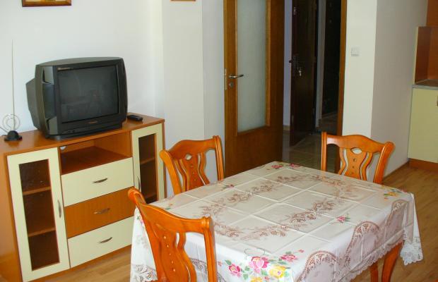 фото отеля Polina (Полина) изображение №13