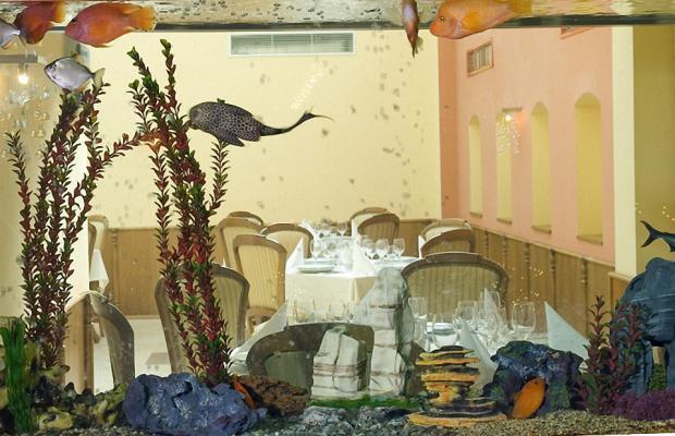 фото отеля Hotel Skalite (Хотел Скалите) изображение №45