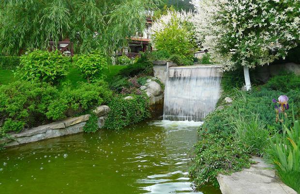 фото отеля SPA Complex Ismena (СПА Комплекс Исмена) изображение №129