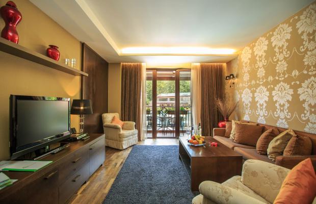 фотографии отеля Park Hotel Pirin изображение №27