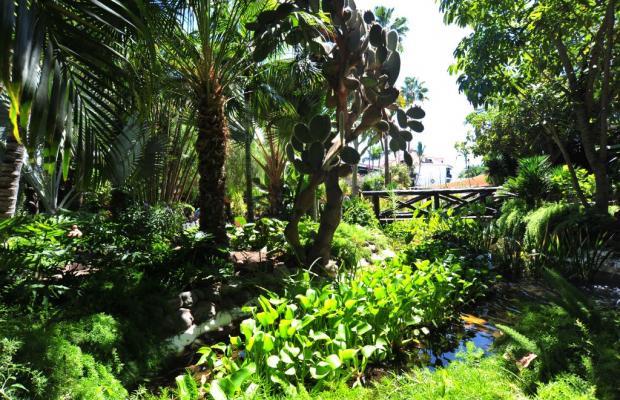 фото Parque Tropical изображение №22