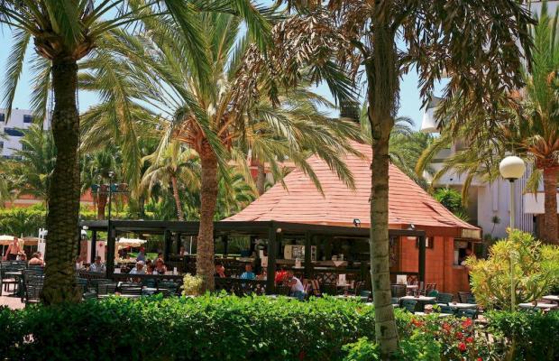 фото отеля ClubHotel Riu Papayas (ex. Riu Flamingo) изображение №17