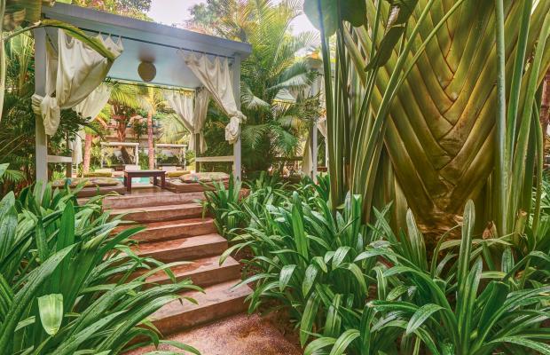 фотографии отеля Plantation - Urban Resort & Spa  изображение №15