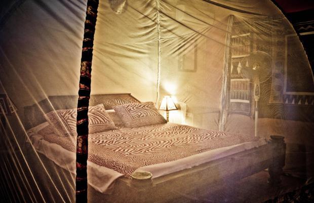 фотографии Paje By Night изображение №16