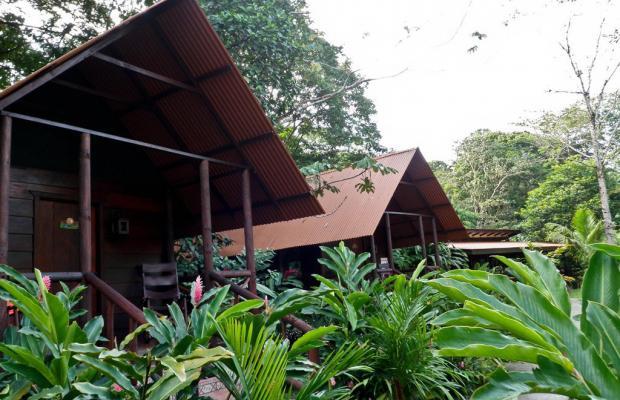 фото Evergreen lodge изображение №74