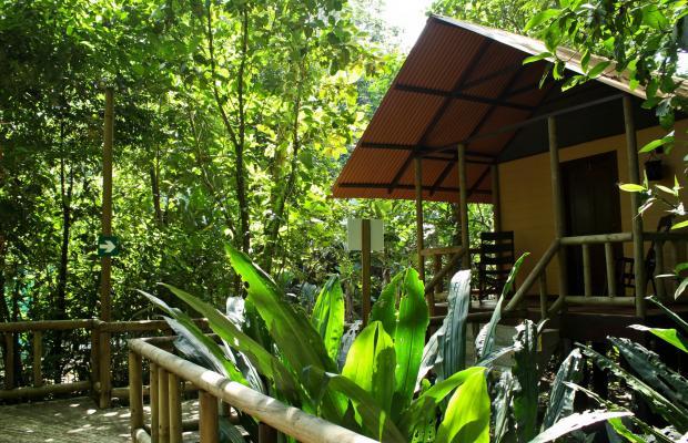 фото отеля Evergreen lodge изображение №65