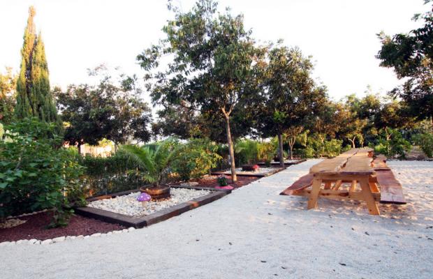 фотографии отеля Nahsholim Seaside Resort (ех. Nachsholim Holiday Village Kibbutz Hotel) изображение №39