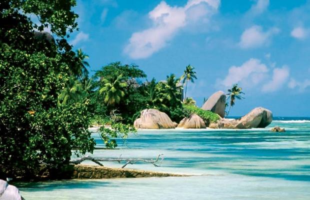 фотографии отеля Zanzibar Dolphin View Paradise Resort & Spa изображение №11