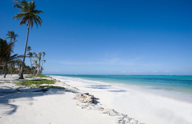 фото Zanzibar Dolphin View Paradise Resort & Spa изображение №2