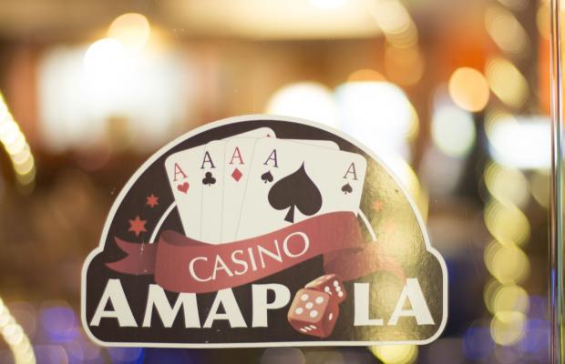 фото Amapola изображение №14