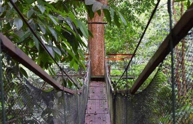 фото Corcovado Adventures Tent Camp изображение №2